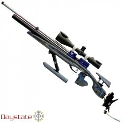 AIR RIFLE DAYSTATE TSAR FIELD TARGET